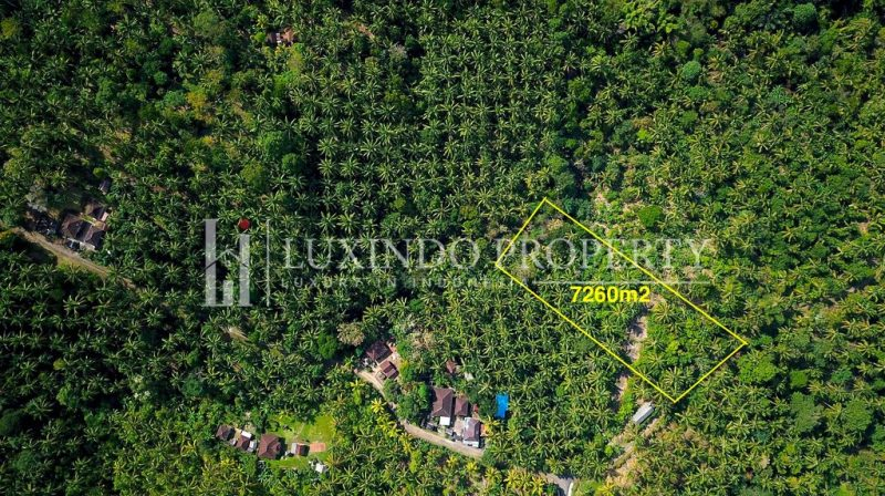 Balian Panoramic Ocean View Land For Sale Fhl017 Luxindo Property