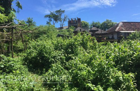 BUKIT – BALI CLIFF STRATEGIC LAND FOR PRIVATE VILLA (FHL059)