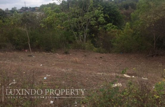 GOA GONG – SMALL PLOT ON THE MAIN ROAD OF GOA GONG  (FHL033)