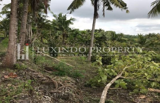 NUSA PENIDA – 9800 M2 FREEHOLD LAND FOR SALE IN NUSA PENIDA BALI (FHL065)