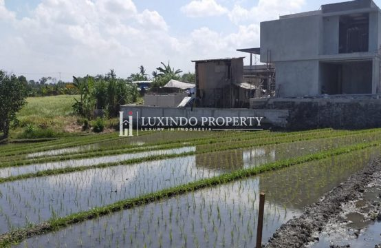 CANGGU – BEAUTIFUL 10 ARE LAND FOR LEASEHOLD SALE IN PANTAI LIMA (LHL031)