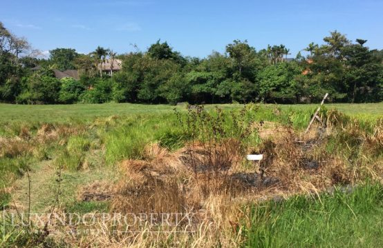 BERAWA – SPACIOUS LAND IN CANGGU CLOSE TO CANGGU CLUB (FHL022)