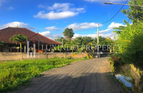 PERERENAN – STRATEGIC LAND FOR LEASE IN CANGGU (LHL051)