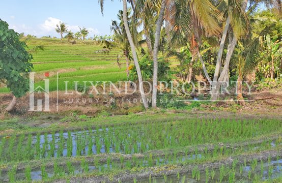 KEDUNGU – 2,5 HECTARES LAND FOR SALE CLOSE TO THE BEACH (FHL112)