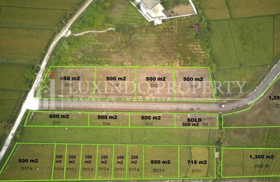 KEDUNGU – 458 M2 LAND FOR SALE CLOSE TO THE BEACH – D19 (FHL129)