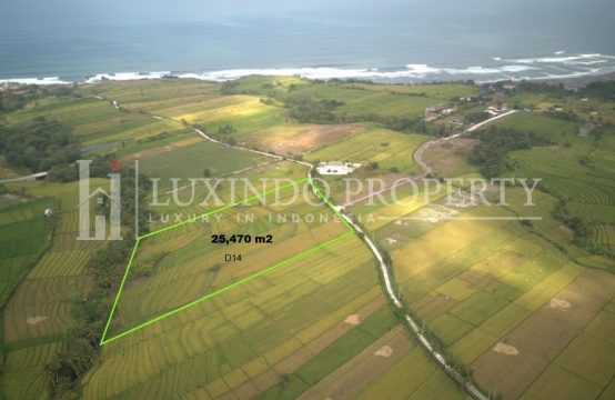 KEDUNGU – LARGE LAND FOR SALE CLOSE TO THE BEACH – D14 (FHL112)