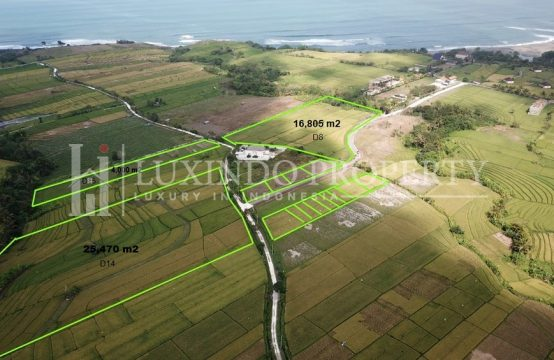 KEDUNGU – 40 ARE LAND FOR SALE CLOSE TO THE BEACH – D15 (FHL125)