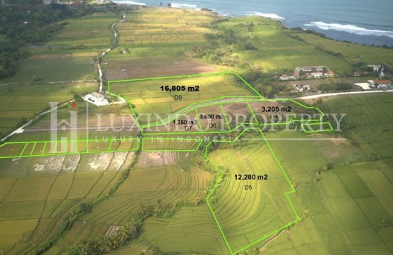 KEDUNGU – LAND FOR SALE CLOSE TO THE BEACH – D8 (FHL121)