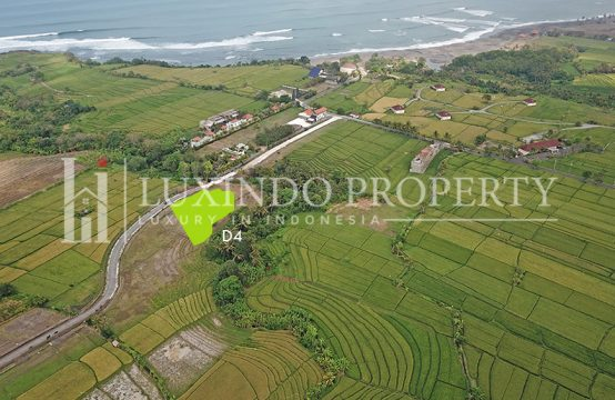 KEDUNGU – LAND 3226 M2 FOR SALE CLOSE TO THE BEACH – D4 (FHL117)