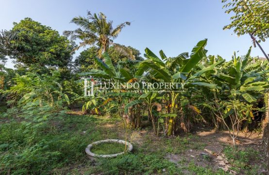 UMALAS – 5 ARE LAND FOR LEASEHOLD SALE IN BANJAR ANYAR  (LHL041)
