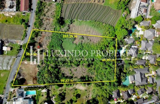 PERERENAN – LARGE MAIN ROAD LAND FOR SALE IN CANGGU(FHL145)