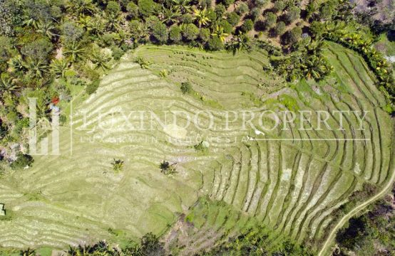 NEGARA – LEASEHOLD LAND WITH FULL VIEW IN NORTH BALI (LHL055)
