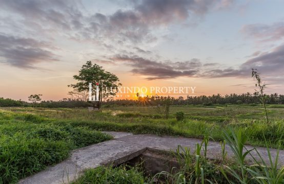 UBUD – UNIQUE 2 BEDROOM VILLA IN THE MIDDLE OF RICE FIELDS (LHV171)