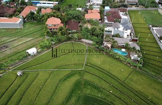 BANJAR ANYAR – LAND FOR LEASE CLOSE TO UMALAS (PLHL1000)