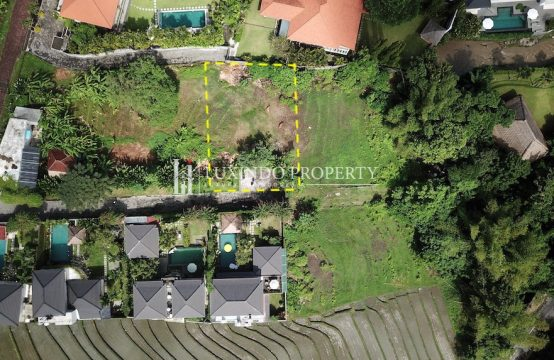 PERERENAN – A PARCEL OF FREEHOLD PRIME PERERENAN LAND (FHL170)