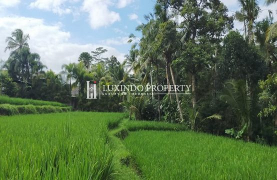 UBUD – LARGE 20 ARE LAND WITH JUNGLE VIEW (LHL062)