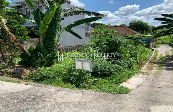 TABANAN – AFFORDABLE LAND FOR FREEHOLD SALE (FHL171)