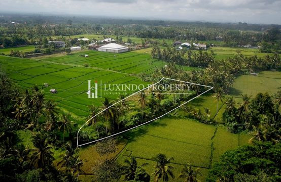 UBUD – RICE FIELD VIEW LAND FOR SALE  (FHL166)