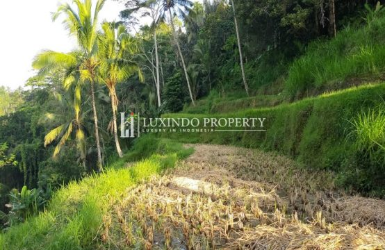 KEDISAN – LARGE PLOT OF LAND FOR LEASEHOLD SALE IN NORTH UBUD (LHL063)
