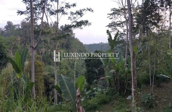 SEBATU – PERFECT PLOT OF LAND FOR FREEHOLD SALE IN NORTH UBUD (FHL172)