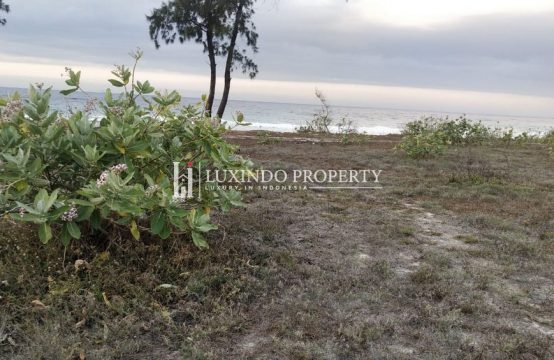 SUMBA – BEACH FRONT LAND IN SOUTHWEST SUMBA FOR FREEHOLD SALE (FHL169)