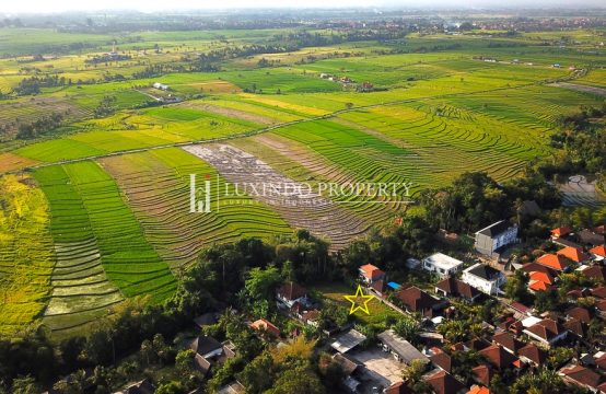PERERENAN – GREENBELT AND RIVER VIEW LAND FOR LEASE IN CANGGU BALI (LHL064)