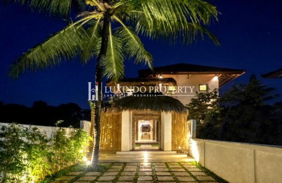 UBUD – BEAUTIFUL 3 BEDROOM VILLA WITH JUNGLE VIEW FOR RENT (RV196)