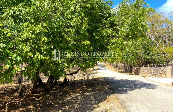 ROTE – MAIN ROAD PRIME LAND IN SEDEOEN (FHL184)