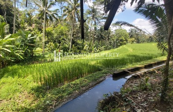 UBUD – EXCELLENT 10 ARE LAND WITH RICE FIELD VIEWS FOR LEASEHOLD SALE (LHL065)