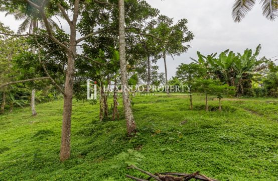 TABANAN – STUNNING PANORAMIC LAND FOR FREEHOLD SALE (FHL192)