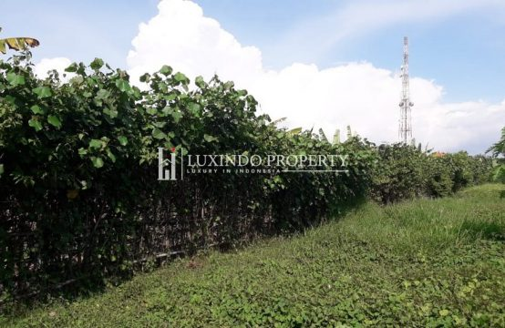 KEROBOKAN – LARGE 41 ARE LAND FOR LEASEHOLD SALE (LHL067)