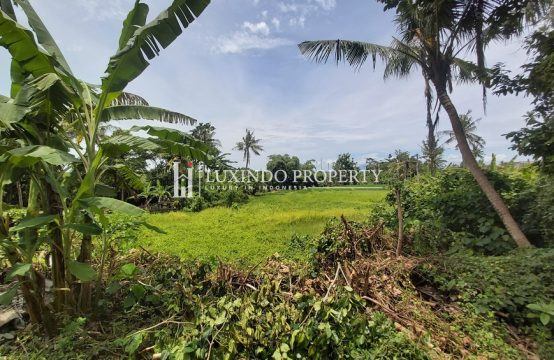 PERERENAN – RARE LEASEHOLD PLOT WITH GREENBELT AND SUNSET VIEWS (LHL069)