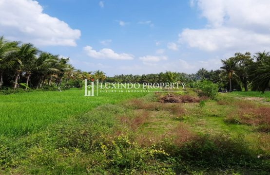TABANAN – MAIN ROAD LAND FOR FREEHOLD SALE IN YEH GANGGA (FHL225)