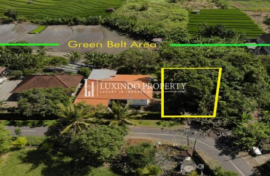 CANGGU – SMALL PLOT FOR LEASE WITH GREENBELT VIEW (LHL081)