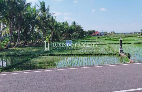 KEDUNGU – MAIN ROAD LAND WITH RICE FIELD & OCEAN VIEW (LHL086)