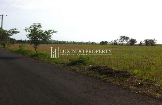 TABANAN – 15 ARE LAND ON MAIN ROAD WITH OCEAN VIEW (FHL240)