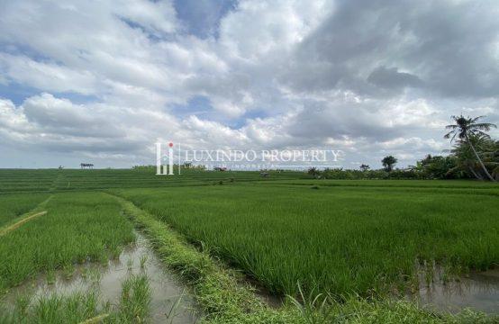 BABAKAN – GREENBELT VIEW LAND (LHL091)